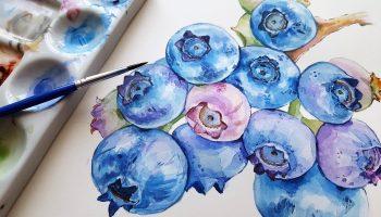 blueberries, fruit, blue